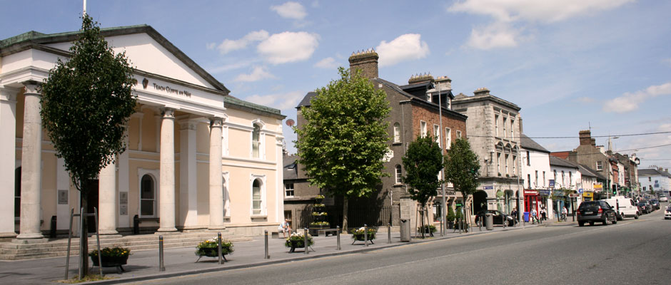 Naas town centre, only a few minutes walk from the house